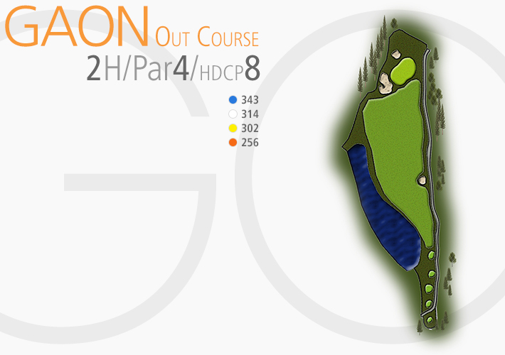 GAON COURSE 2H