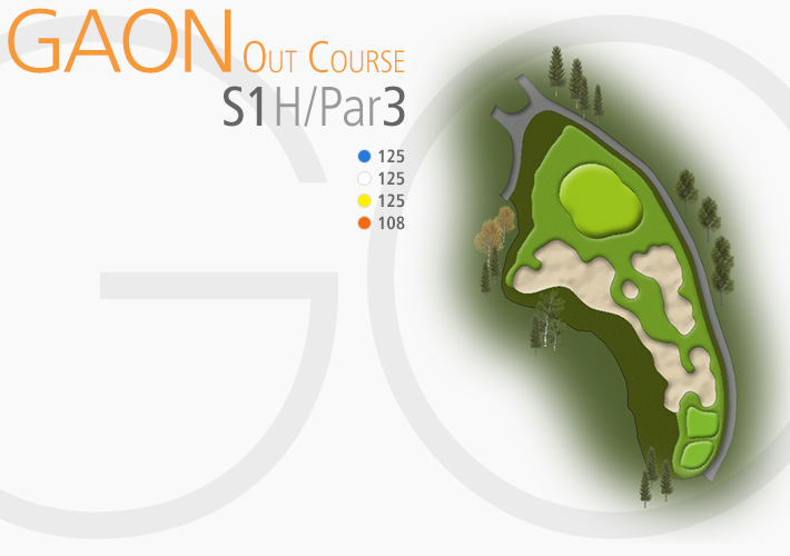 GAON COURSE 1S